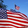 Beautiful American Flags by Irwin Sterbakov