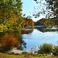 Willow Pond, Caleb Smith Preserve by Stacie Siemsen