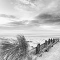 Beautiful Beach Coastal Low Tide Landscape Image At Sunrise In B by Matthew Gibson