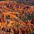 Beautiful Bryce Canyon by James BO Insogna
