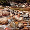 Beautiful Creek by Dan Pearce