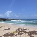 Beautiful Deserted Boca Keto Beach In Aruba by DejaVu Designs