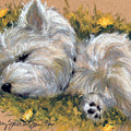 Beautiful Dreamer by Mary Sparrow