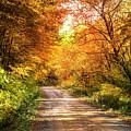 Beautiful Fall Day by Debra and Dave Vanderlaan