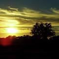 Beautiful Florida Sunset by D Hackett