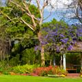 Beautiful Garden Gazebo In Selby Gardens by Ginger Wakem