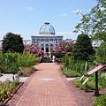 Beautiful Garden by Liza Eckardt