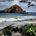 Beautiful Hawaii by Melvin Busch