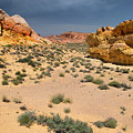 Beautiful Hiking In The Valley Of Fire by Frank Wilson