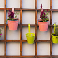 Beautiful Idea For Flower Pots In Garden by Newnow Photography By Vera Cepic