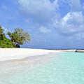 Beautiful Island From Maldives by Oana Unciuleanu