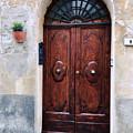 Viaje Beautiful Italian Door Volterre  by Femina Photo Art By Maggie