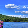 Beautiful Luby Bay On Priest Lake by David Patterson