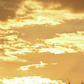 Beautiful Morming Sky  by Ruth Housley