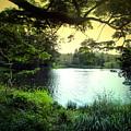 Beautiful Mountain Lake by Joyce Dickens