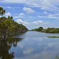 Beautiful Old Florida by Carol  Bradley