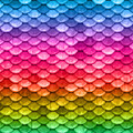 Beautiful Pastel Horizontal Rainbow Mermaid Fish Scales by Tina Lavoie