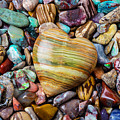 Beautiful Polished Colorful Stones by Garry Gay