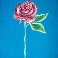 Beautiful Rose On  Blue Background by Sanchia Fernandes