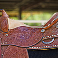 Beautiful Saddle by Marilyn Hunt