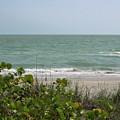 Beautiful Seascape by D Hackett
