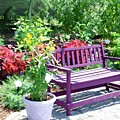 Beautiful Spot For Relaxing 4 by Jeelan Clark