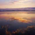 Beautiful Sunset Along Oregon Coast by Vishwanath Bhat