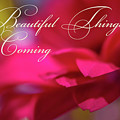 Beautiful Things Are Coming by Marnie Patchett