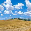 Beautiful Tuscany Landscape With Traditional Farm House And Dram by JR Photography