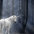 Beautiful Unicorn In Snowy Forest by Ethiriel  Photography