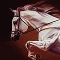 Beautiful White Running Horse 9iu by Gull G