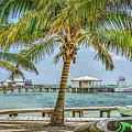 Beautifull Day In Paradise by David Zanzinger