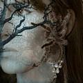 Beauty And The Beast by Tammera Malicki-Wong