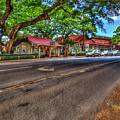 Beauty Lives Old Koloa Town Kauai Collection Art by Reid Callaway