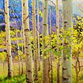 Beauty Of Aspen Colorado by Gary Kim