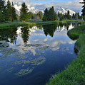 Beaver Dam At Schwabacher Landing by Ray Mathis