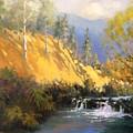 Beaver Dam by R W Carlson