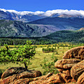 Beaver Meadows In Rocky Mountain National Park by Carolyn Derstine