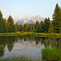 Beaver Pond At Schwabacher Landing by Teresa Zieba