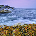 Beavertail Lighthouse, Jamestown, Rhode Island by Shobeir Ansari