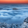 Bed Of Clouds by Evgeni Dinev