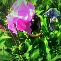 Bee Climbing Into Flower by Debra Lynch