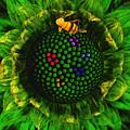 Bee Flower by Leonardo Digenio