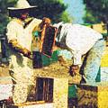 Bee Keepers by Roy Pedersen