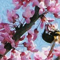 Bee To The Blossom by Jeffrey Kolker