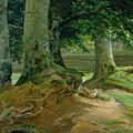 Beech Trees In Frederiksdal Near Copenhagen by Christian Ernst Bernhard Morgenstern