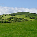 Beecraigs Hills. by Elena Perelman