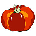 Beefsteak Tomato by MM Anderson