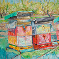 Beehives In Orchard by Vitali Komarov