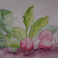 Beets by Diana Prout